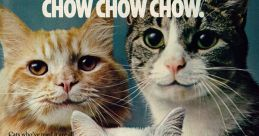 Purina Cat Chow Advert Music