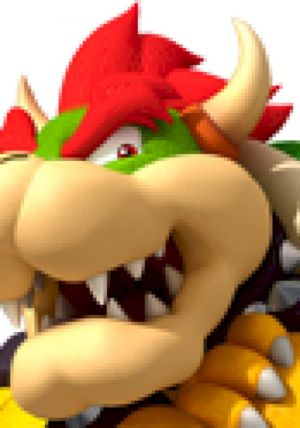 Bowser Sounds: New Super Mario Bros. Wii