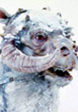 Tauntaun Sounds: Star Wars