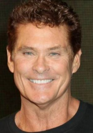 David Hasselhoff Sounds: SpongeBob SquarePants Movie