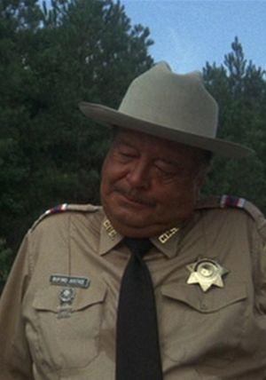Sheriff Buford T. Justice  Soundboard